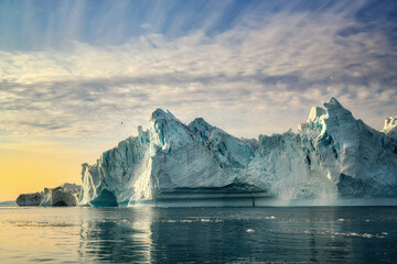 Greenland Ilulissat glaciers at ocean at polar night with bird