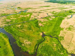 Narew Podlasie Podlaskie Narwiański Park Narodowy  Rzeka woda trzcina łąka pole widok z drona