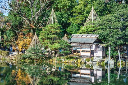 Kenrokuen Garden of  autumn maple season in Ishikawa Prefecture, Japan.