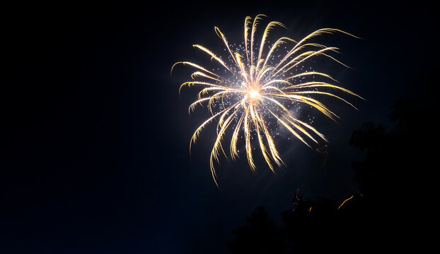 White and yellow fireworks at night sky with visible trees