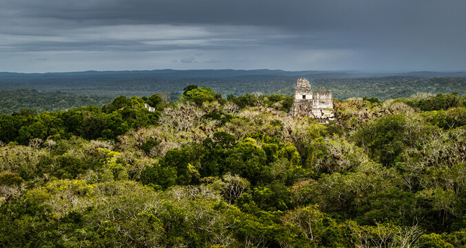 Dense jungle surrounding Tikal archaeological site with the storm cloud on the horizon. Peten, Guatemala.