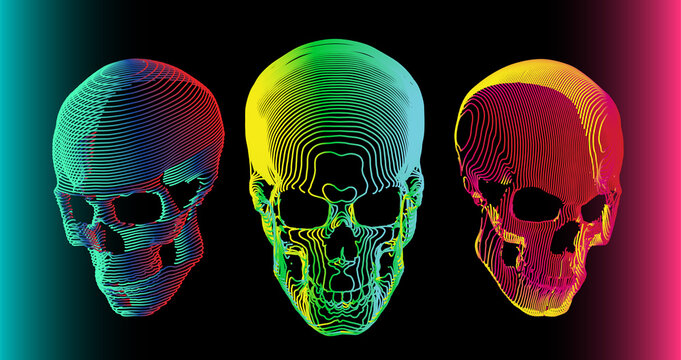 3 psychedelic gradient colorful line skull vector illustration in abstract minimal line-art style isolated on dark background.