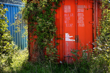 A forgotten red cargo container overgrown with plants. The number of the container is not a real number.