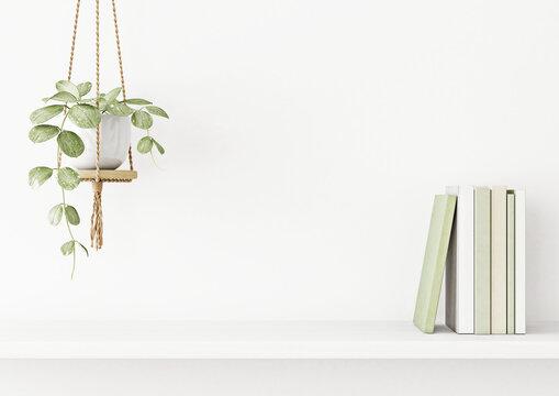 Interior wall mockup with green plant in hanging pot and books on the shelf on empty white background with free space on center. 3D rendering, illustration.