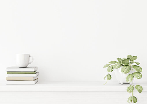 Interior wall mockup with green plant in pot and pile of books with cup on empty white background with free space on center. 3D rendering, illustration.
