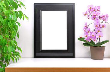 Empty frame to personalize placed on a white desk next to a computer, pink orchid flower and a potted ficus tree, for staging a photo or drawing, pink orchid with a ladybug placed on a leaf