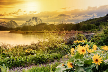 Grand Teton National Park scenery along Oxbow Bend on a partially cloudy day in early June
