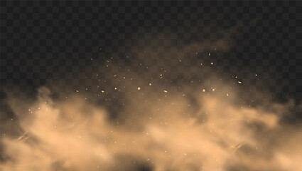 Dust sand cloud with stones and flying dusty particles isolated on transparent background. Desert sandstorm. Realistic vector illustration