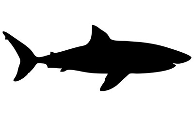 Photo sur Aluminium Dauphins shark silhouette isolated on white