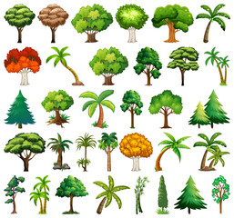 Poster Kids Set of variety plants and trees