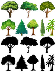 Poster Kids Set of plant and tree with its silhouette