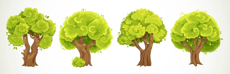 Set of four old big thick trees with summer green foliage vector drawing isolated on white background