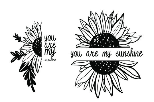 Hand drawn sunflower illustration for t-shirt, tattoo