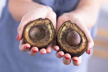 Rotten avocado fruit expired or too bad condition to be consumed