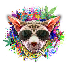 grunge background with graffiti and painted cat with cannabis cigarette