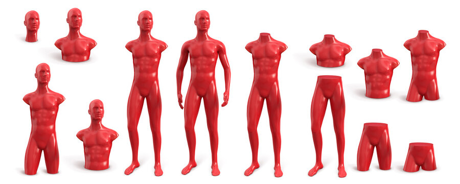 Naked plastic male mannequin for clothes red color. Set from different parts of the male body. Front view. Vector 3d illustration isolated on white background.