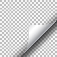 White paper corner on transparent background.