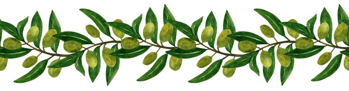 Olives seamless brush, border with olive branches and fruits for Italian cuisine design or extra virgin oil food or cosmetic product packaging wrapper. Hand drawn Illustration in watercolor.