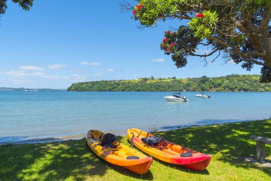 Panoramic View of Campbells Beach Matakana, Tawharanui Peninsula, Auckland New Zealand