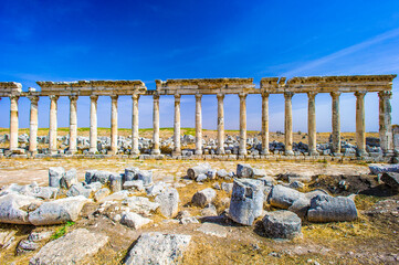 Printed roller blinds Ruins It's Ruins of the columns of Apamea, Syria.