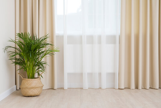 Modern interior of living room with curtained window and laminate