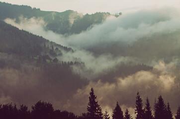 Canvas Prints Cappuccino Foggy morning landscape