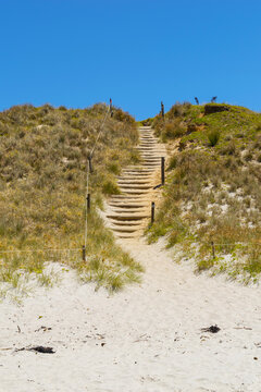 Panoramic View of Tawharanui Beach and Regional Park, Auckland New Zealand; White Sandy Beach during Low Tide; Pathway