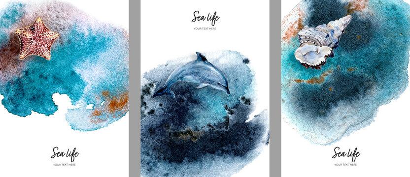 Invitation design template sea star, dolphin, seashell watercolor hand drawn illustration on splash background texture.