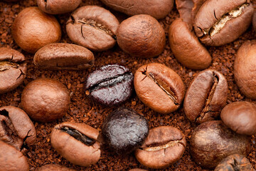 Tuinposter koffiebar Granosde café