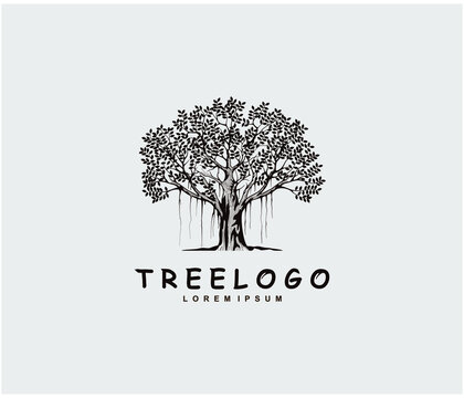 Tree logo design template, vector isolated.  banyan tree logo.