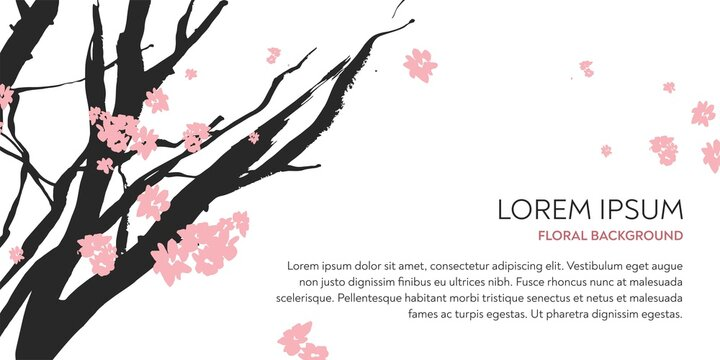 Branches of the cherry tree with pink flowers drawn by hand by ink on a white background in the technique of Chinese graphics. Horizontal banner for salon of beauty, cosmetology. Vector illustration.