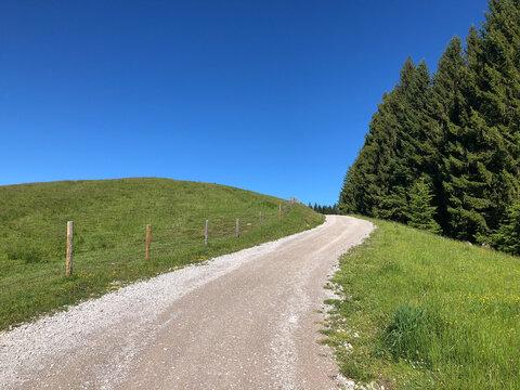 Leerer und Einsamer Bergweg in den Alpen. Wohin?