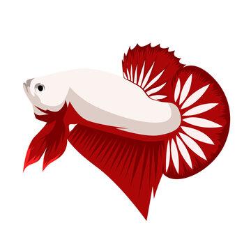 Betta Red Dragon Logo Vector Design