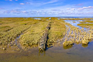 Wall Mural - campshedding Tidal Marshland Waddensea