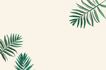 Photo sur Toile Inde Tropical palm leaves from above - flat lay