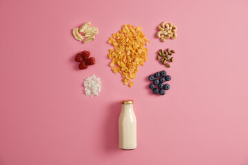 Healthy breakfast and dieting concept. Bottle of fresh vegan milk, coconut flakes, ripe raspberry and blueberry, dried apple, cashew and pistachio on pink background. Ingredients for nutrient snack Papier Peint