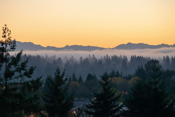 Yellowish sky over the silhouette of Pacific Cascade Range with silhouette of a forest in foreground during twilight hours on Mercer Island in Washington state on an autumn day.
