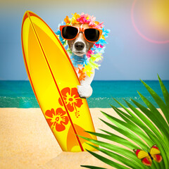 Fotorolgordijn Crazy dog summer paradise vacation surfer dog