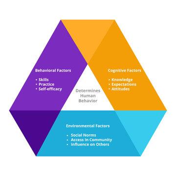 Determines human behavior cognitive factors knowledge expectations attitudes environmental factors social norm access in community influence on others behavior factors diagram flat style.