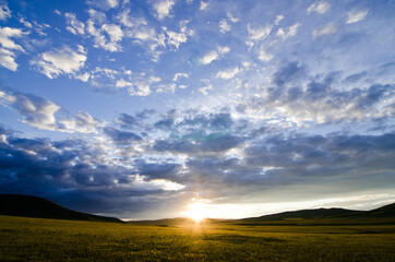 Beautiful dramatic summer sunset with scattered clouds and sun touching the horizon on a crops meadow, Mongolia