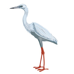 stork bird in blue with red legs in a natural style, isolated object on a white background, vector illustration,
