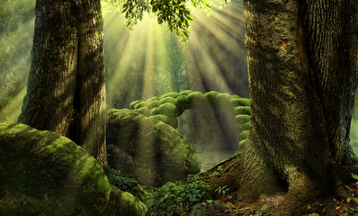 Forest landscape with stone bridge, sun rays, mossy rocks, old trees