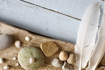 Beautiful flat lay image with sea shells and rocks on rustic wood background. Copy space.