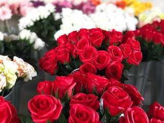 たくさんのバラの花