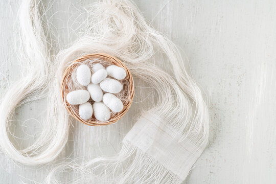 natural silkworm cocoons shells are source of silk thread