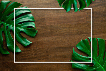 Wall Mural - Monstera leaf top view philodendron leaf pattern on old wooden table background with white frame, copy space