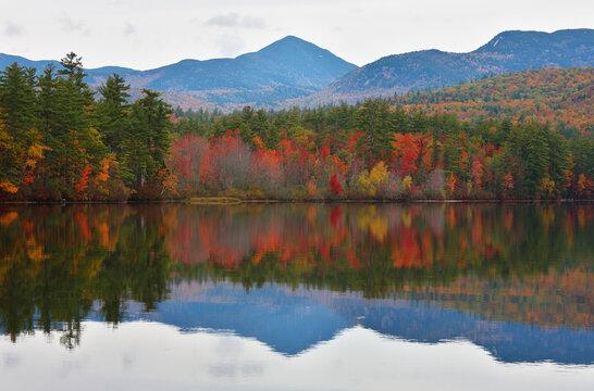 Beautiful fall foliage at White Mountain, New Hampshire.