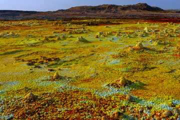 Colorful ponds of Dallol desert close up