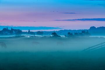 Foggy sunrise over the Sassenheim meadows along the Kagerplassen in in the Netherlands.