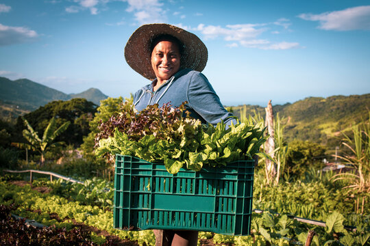 Portrait of proud organic farmer woman wearing a hat from a quilombola community harvesting vegetables. Bio food gathering in a sunny day and blue sky.